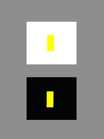3_La_relatività_del_colore_Josef _Albers